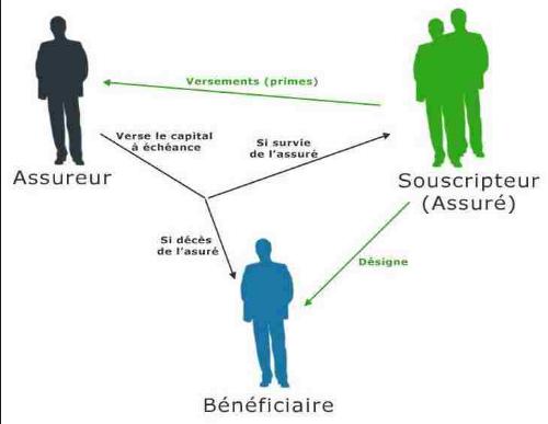 Assurance Vie Pour Les Nuls Explications Contrat